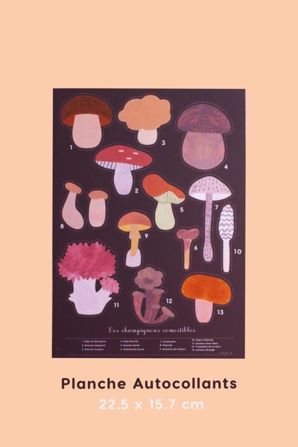 13 autocollants champignons des bois