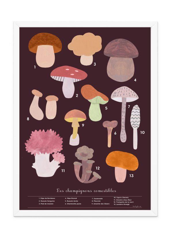 Affiche-champignons-de-la-forêt-décoration-chambre-enfant-bébé