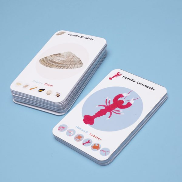 Apprendre-en-s'amusant-jeu-de-cartes-apprendre-la-classification-des-océans